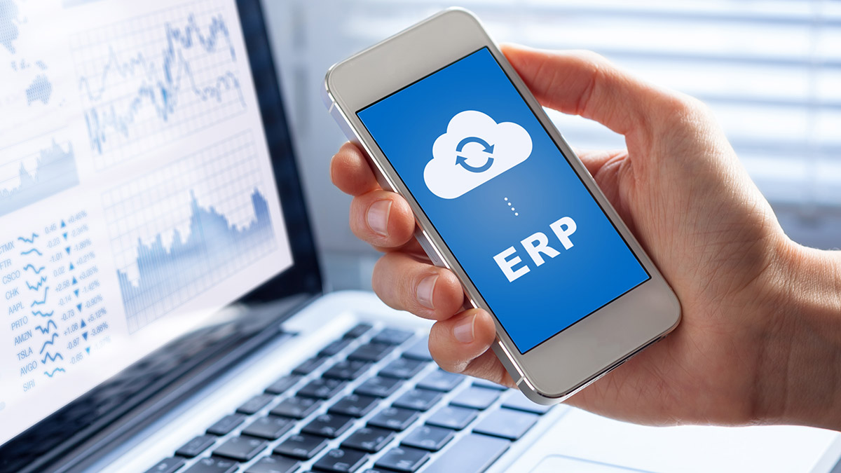 vantagig erp cloud